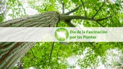 Taller de txiki ciencia: La fascinación por las plantas (Aranguren) @ Locales municipales - Mutilva - Valle de Aranguren